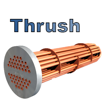 Steam to Water Tube Bundles Equivalent to Thrush